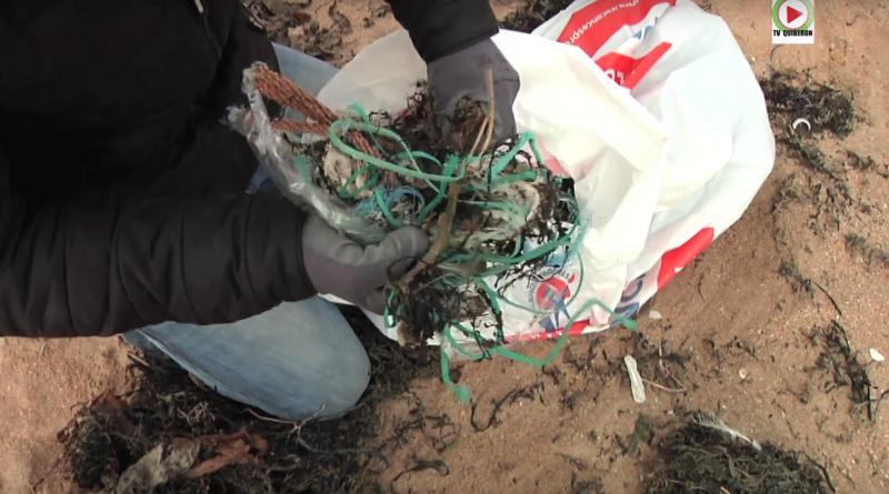 PLOUHARNEL: Nettoyage plage de Sainte-Barbe
