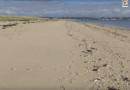 Plouharnel: Les Sables Blancs Hiver - Bretagne Télé