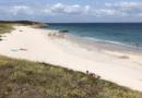 Ile d'Hoëdic: Les plages de l'été