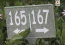 Le Camping du Goviro rouvert en 2020 - TV Quiberon 24/7