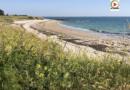 La plage de l'Aérodrome - TV Quiberon