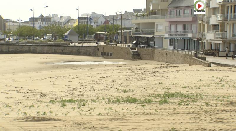 Sur la grande plage ça pousse - TV Quiberon