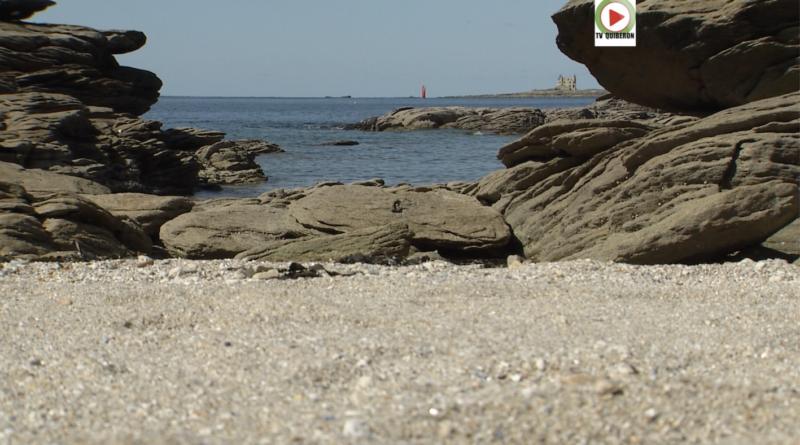 Quiberon | Confinés en bord de mer - TV Quiberon 24/7