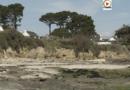 Saint-Pierre Quiberon | Confinés à la Plage - TV Quiberon 24/7
