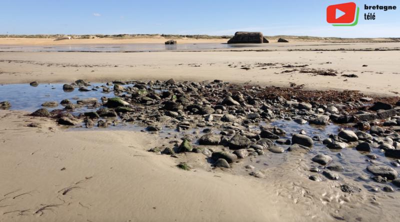 Erdeven | Grande Marée chez les Naturistes - Bretagne Télé